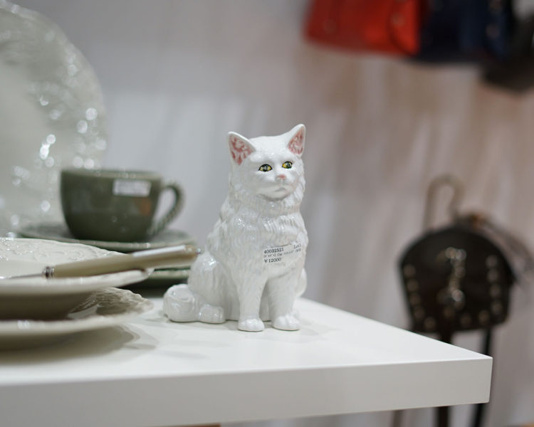 猫,CAT